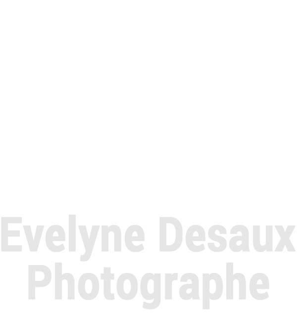 Evelyne Desaux